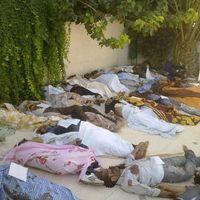 Que s'est-il passé à Daraya ? Un journaliste anglais prend le contrepied de la version des rebelles syriens